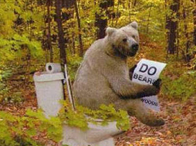 bear-shitting.jpg
