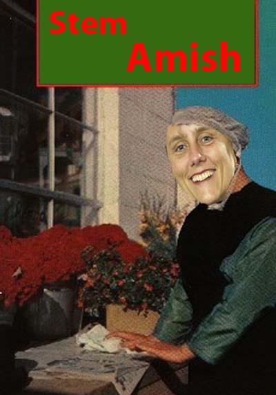 amish4.jpg