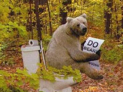 bear-shitting.jpg